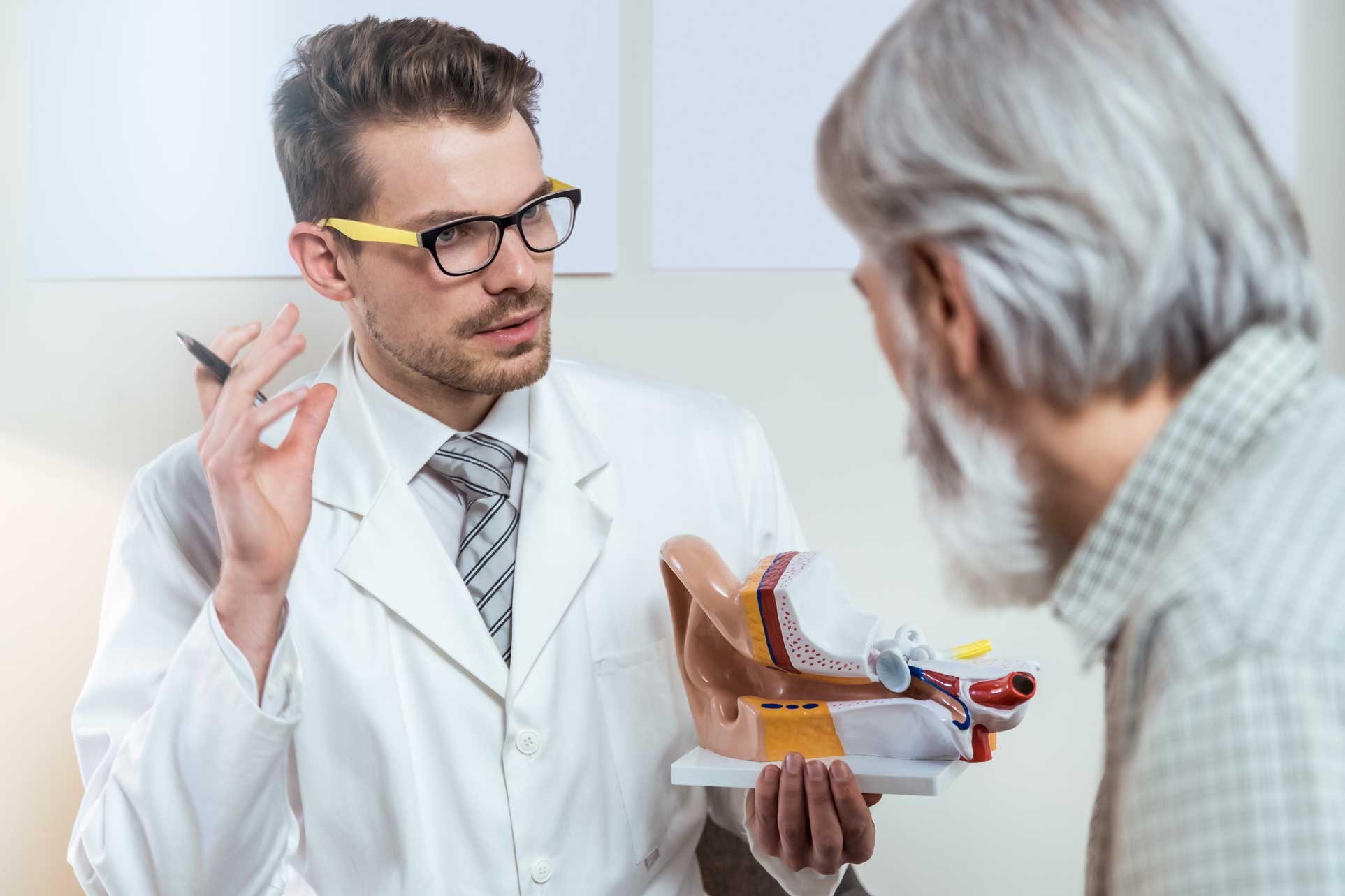 audiologist holding model of ear and talking to patient